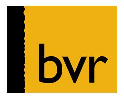 BVR-advies logo